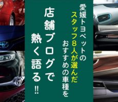 愛媛トヨペットのスタッフが選んだオススメの車種特集!